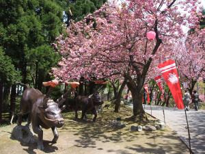 歴史国道(倶利伽羅古戦場)